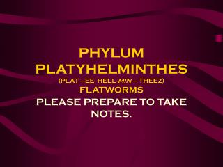 PHYLUM PLATYHELMINTHES (PLAT –EE- HELL- MIN  – THEEZ) FLATWORMS