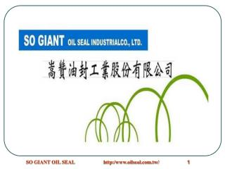 SO GIANT OIL SEAL INDUSTRIAL CO.,LTD.
