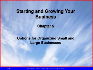 Starting and Growing Your Business Chapter 5 Options for Organizing Small and Large Businesses