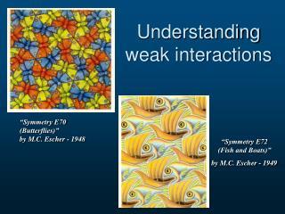 Understanding weak interactions