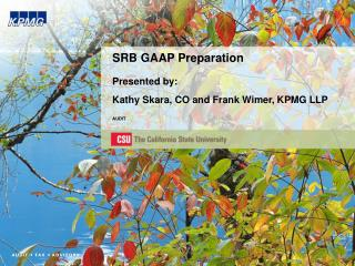 SRB GAAP Preparation Presented by: Kathy Skara, CO and Frank Wimer, KPMG LLP AUDIT