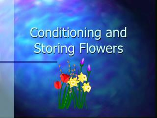Conditioning and Storing Flowers