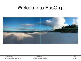 Welcome to BusOrg!