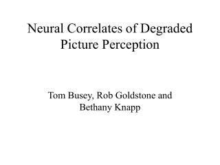 Neural Correlates of Degraded Picture Perception