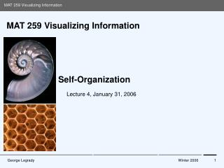 MAT 259 Visualizing Information