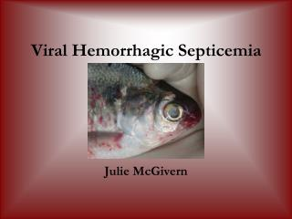 Viral Hemorrhagic Septicemia