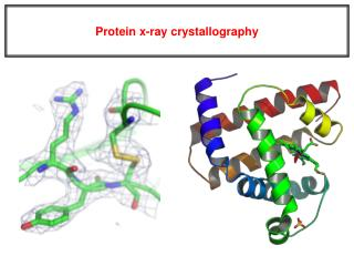 Protein x-ray crystallography
