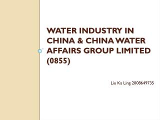 Water industry in china &  China Water Affairs Group Limited  (0855)