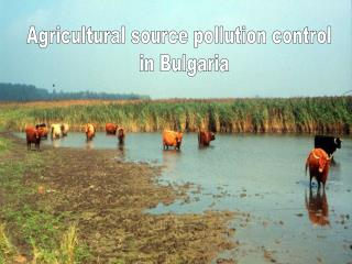 Agricultural source pollution control   in Bulgaria