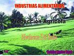 Produccion Agricola