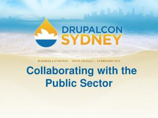 Collaborating with the Public Sector