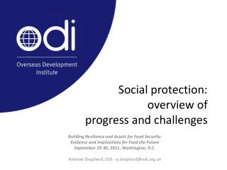 Social protection:  overview of  progress and challenges
