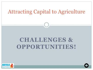 Attracting Capital to Agriculture