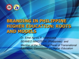 Science and Mathematics Education  in the Philippines:  Basic Education Level
