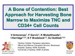 A Bone of Contention: Best Approach for Harvesting Bone Marrow to Maximize TNC and CD34 Cell Counts