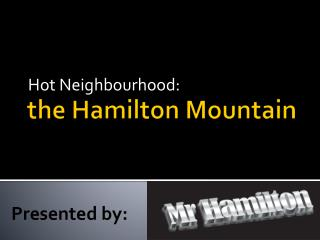 the Hamilton Mountain
