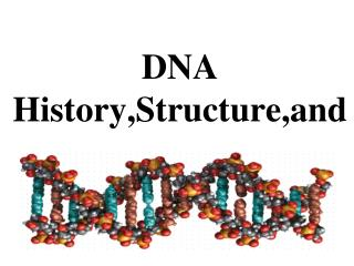 DNA History,Structure,and