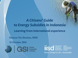 A Citizens' Guide  to Energy Subsidies in Indonesia Learning from international experience