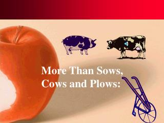More Than Sows,  Cows and Plows: