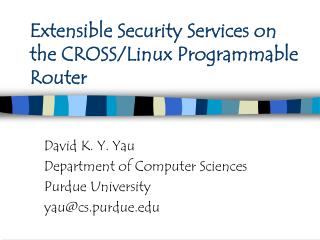 Extensible Security Services on the CROSS/Linux Programmable Router