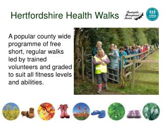 Hertfordshire Health Walks