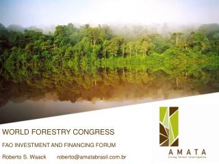 WORLD FORESTRY CONGRESS FAO INVESTMENT AND FINANCING FORUM Roberto S. Waack       roberto@amatabrasil.com.br