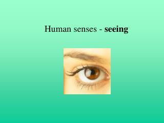 Human senses - seeing