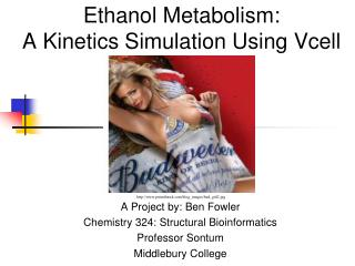 Ethanol Metabolism:  A Kinetics Simulation Using Vcell