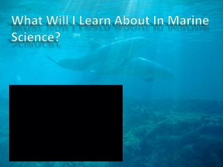 What Will I Learn About In Marine Science?