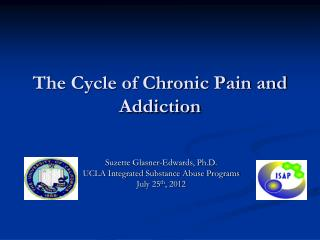 The Cycle of Chronic Pain and Addiction