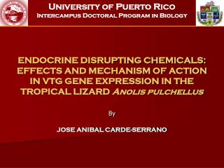 ENDOCRINE DISRUPTING CHEMICALS: EFFECTS AND MECHANISM OF ACTION IN VTG GENE EXPRESSION IN THE TROPICAL LIZARD  Anolis pu