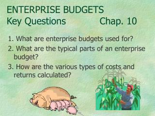 ENTERPRISE BUDGETS Key QuestionsChap. 10