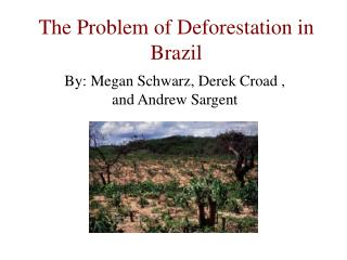 The Problem of Deforestation in Brazil