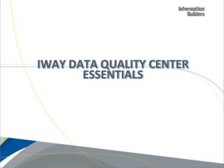 iWay Data Quality Center Essentials