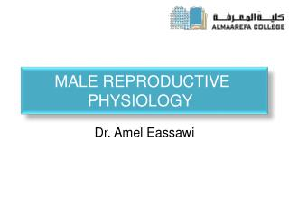 Male  R eproductive Physiology