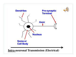 Intra- neuronal Transmission (Electrical)