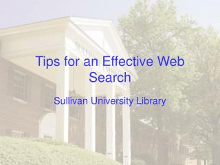 Tips for an Effective Web Search