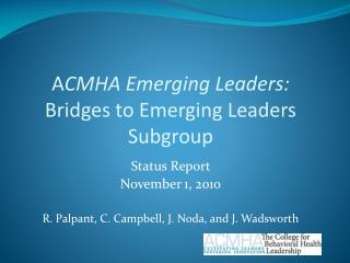 A CMHA Emerging Leaders: Bridges to Emerging Leaders Subgroup