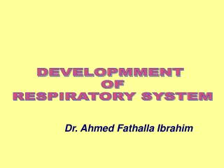 DEVELOPMMENT  OF RESPIRATORY SYSTEM