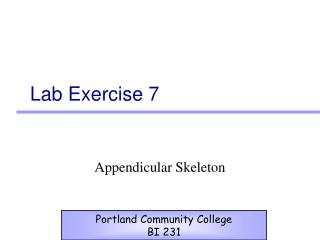 Lab Exercise 7
