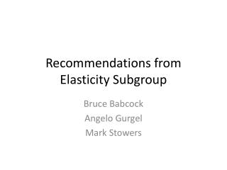 Recommendations from Elasticity Subgroup