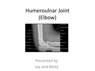 Humeroulnar  Joint (Elbow)