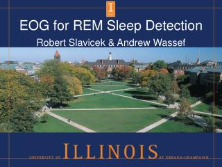 EOG for REM Sleep Detection