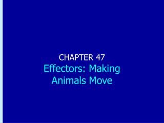 CHAPTER 47 Effectors: Making  Animals Move