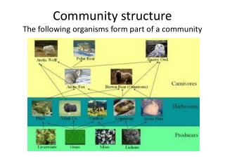 Community structure The following organisms form part of a community