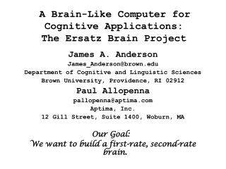 A Brain-Like Computer for Cognitive Applications:  The Ersatz Brain Project