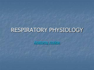 RESPIRATORY PHYSIOLOGY Anatomy review