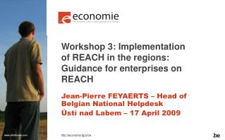 Workshop 3: Implementation of REACH in the regions:  Guidance for enterprises on REACH