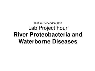 Culture-Dependent Unit Lab Project Four River Proteobacteria and Waterborne Diseases