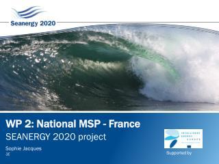 WP 2: National MSP - France